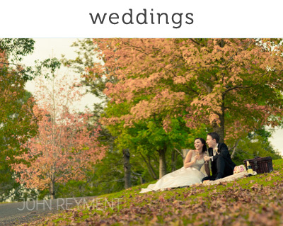 Autumn wedding spicers clovelly estate brisbane wedding photographer john reyment 01