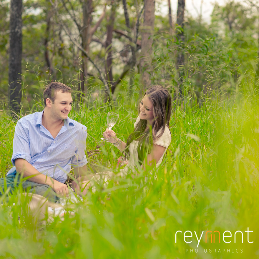 Valentines day picnic, red roses, engagement portrait